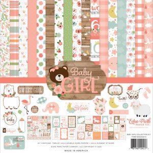 BAG202016 zestaw papierów Baby Girl Echo Park