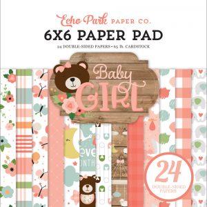 BAG2020223 zestaw papierów Baby Girl Echo Park