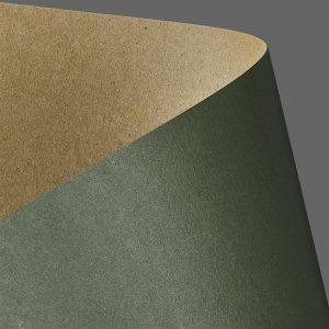 204414 karton gładki Galeria Papieru