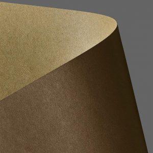 204418 karton gładki Galeria Papieru