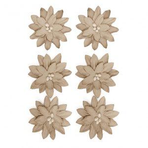 252009 kwiaty Dalie Galeria Papieru
