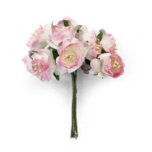 252028 kwiaty Piwonie Galeria Papieru